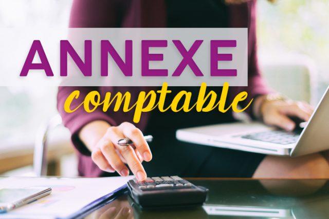 Dans quel cas faut-il appliquer la dispense d'annexe comptable ?